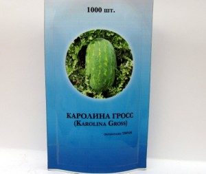 каролина гросс