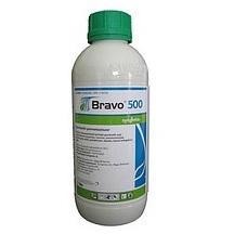 wpid-6331_Bravo1L.jpg