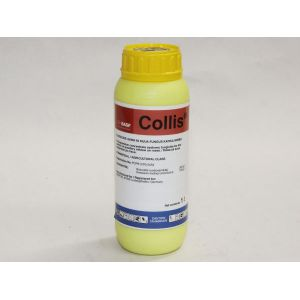 wpid-Collis-300x300.jpg