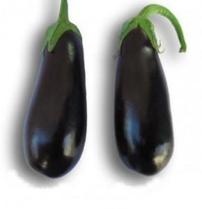 Семена баклажана ЭПИК F-1