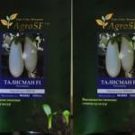 Семена баклажана Талисман F-1